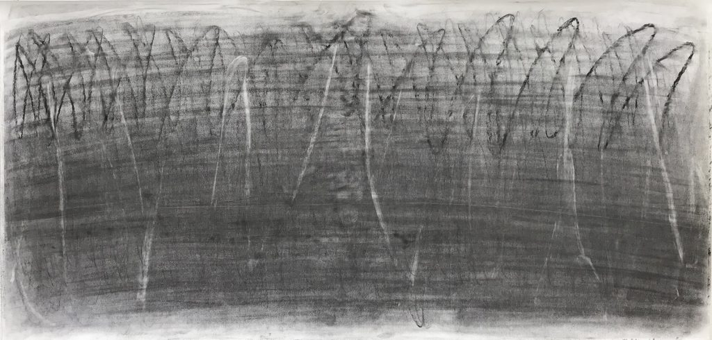 Meng-Hsuan Chin, Mid of Summer, pencil, charcoal on paper, 70x146cm, 2019