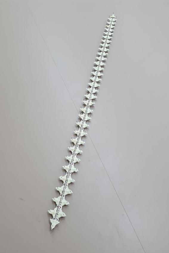 Julius Jurkiewitsch, I, Rafflesia (Detail), 2021, Mixed Media, Maße variabel, AdBK Nürnberg