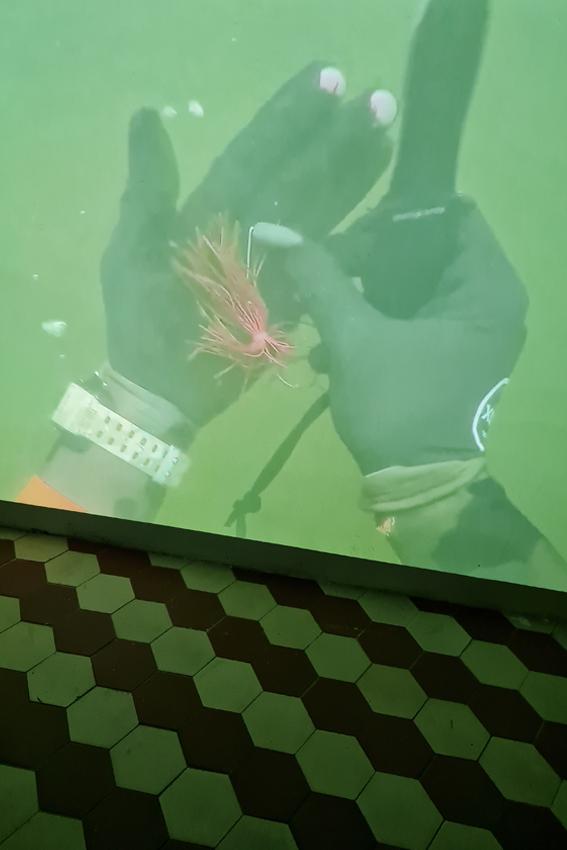 Julius Jurkiewitsch, This is water (Detail), 2021, Mixed Media, Maße variabel, Edel Extra, Nürnberg