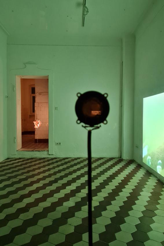 Julius Jurkiewitsch, This is water, 2021, Mixed Media, Maße variabel, Installationsansicht Edel Extra, Nürnberg