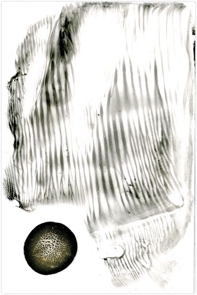 Würmer I, 2020, Pigment und synthetisches Bindemittel auf Steinpapier